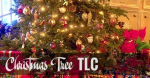 christmasTreeTLC